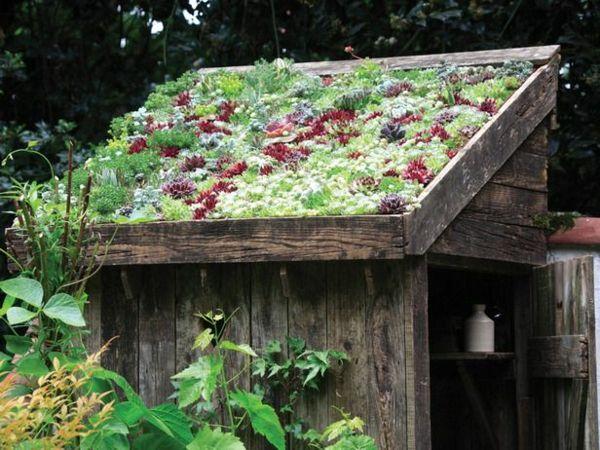 Dachbegrünung Gartenhaus Exterior in Grün (mit Bildern