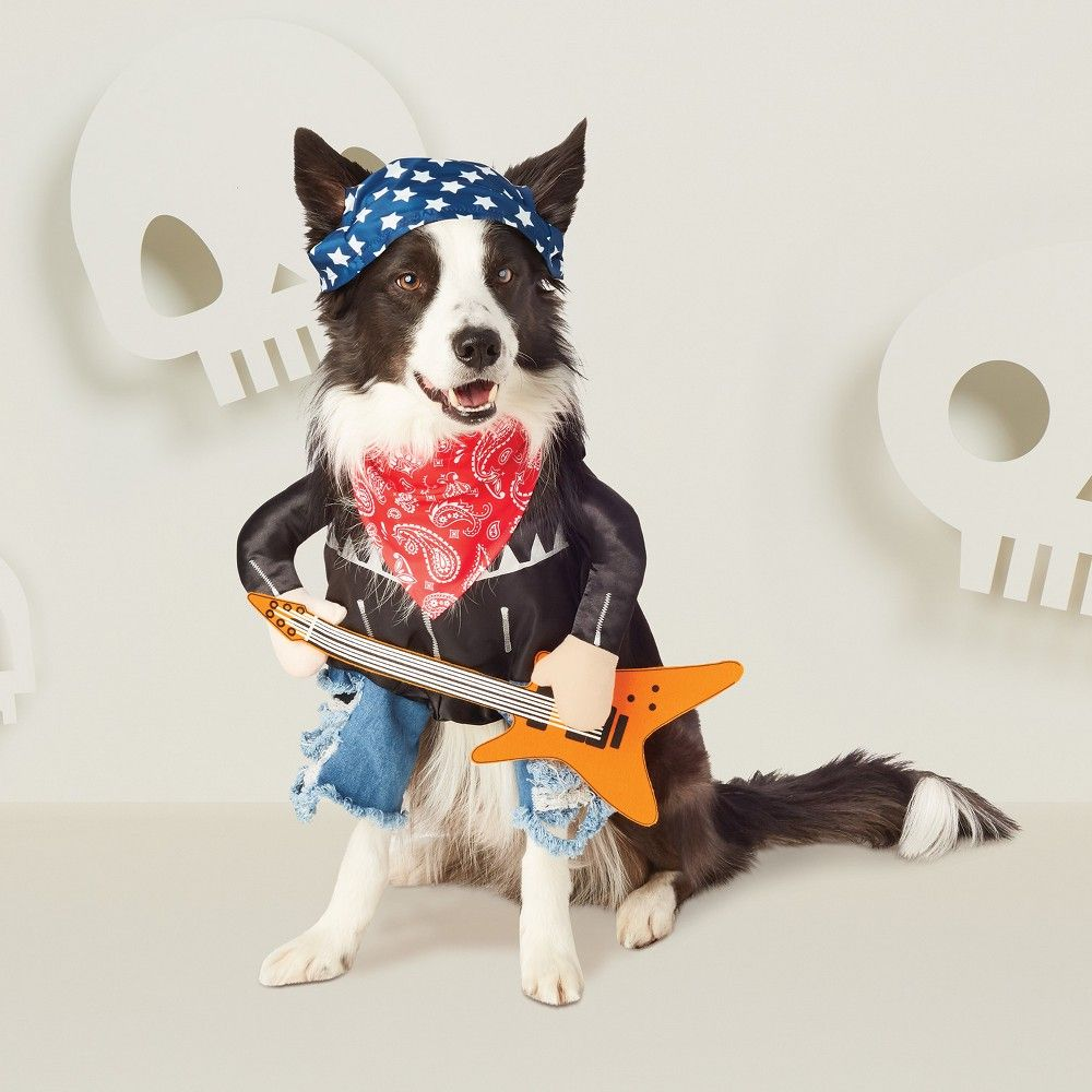 Halloween Frontal Rock Star Dog Costume Xs Hyde And Eek