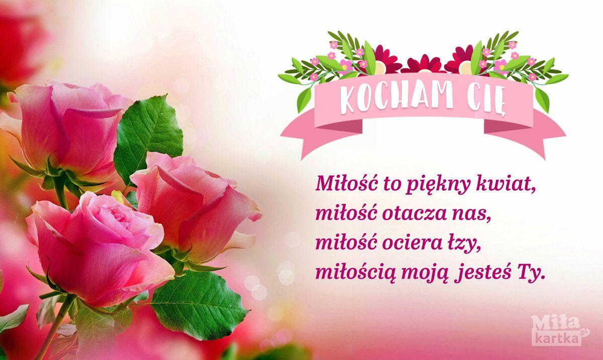 Miłość To Piękny Kwiat Kartki Miłość Walentynki Love