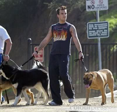 Robbie Williams And His Dogs Robbie Williams Famous Dogs Robbie