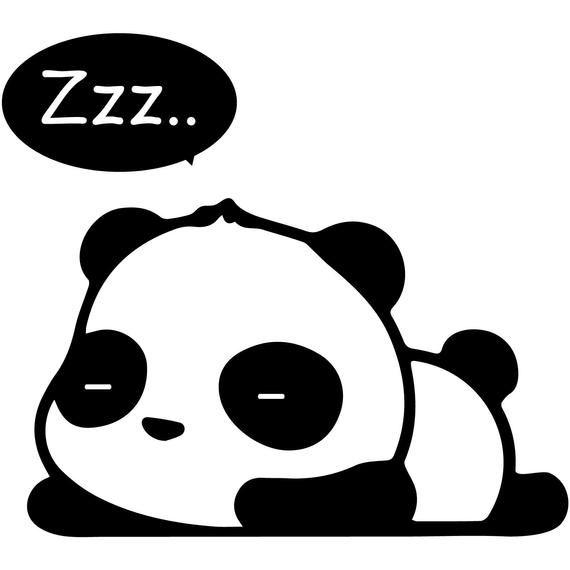ANIMAL PANDAS BEAR FUNNY CAR DECAL BUMPER STICKER WALL got panda
