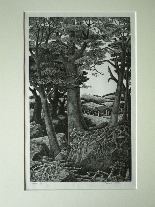 """Monica Poole wood engraving, """"Gully"""" - Barham Money Fine Art in Hove Sussex"""
