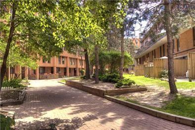 804 Clark Blvd - Apartments for rent in Brampton on http ...