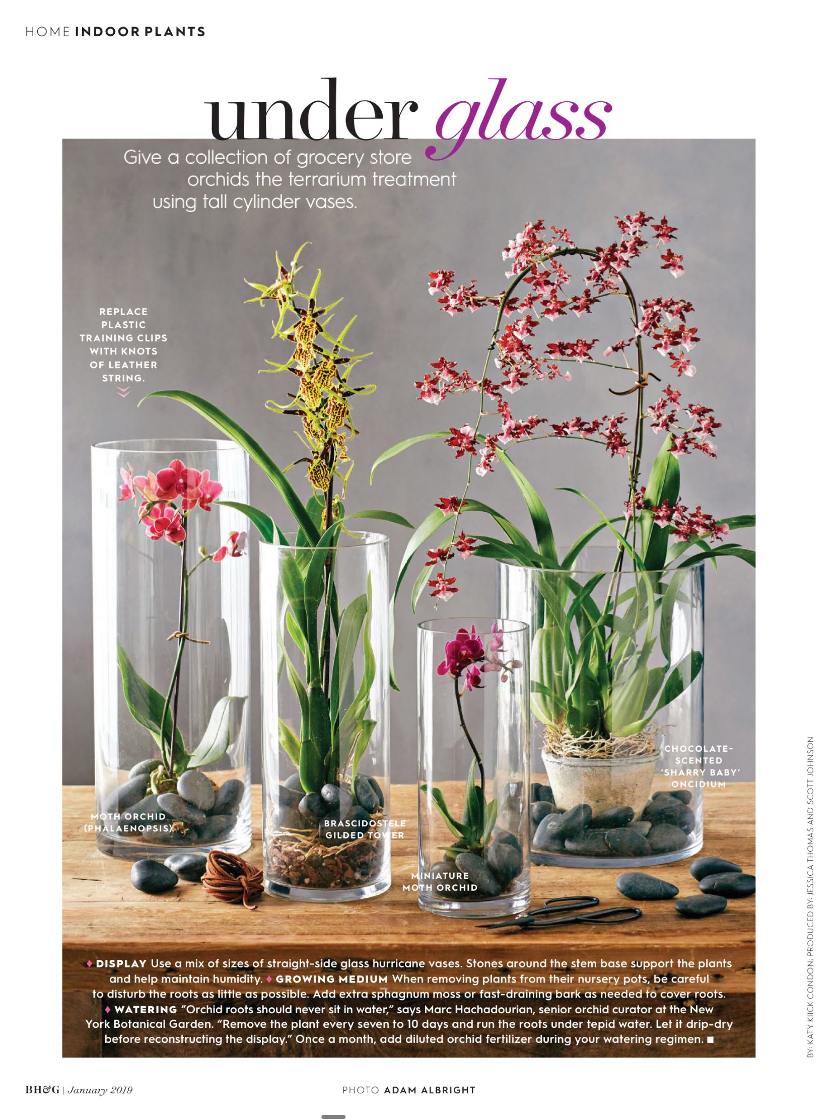 Better homes and gardens january 2019 read it on the