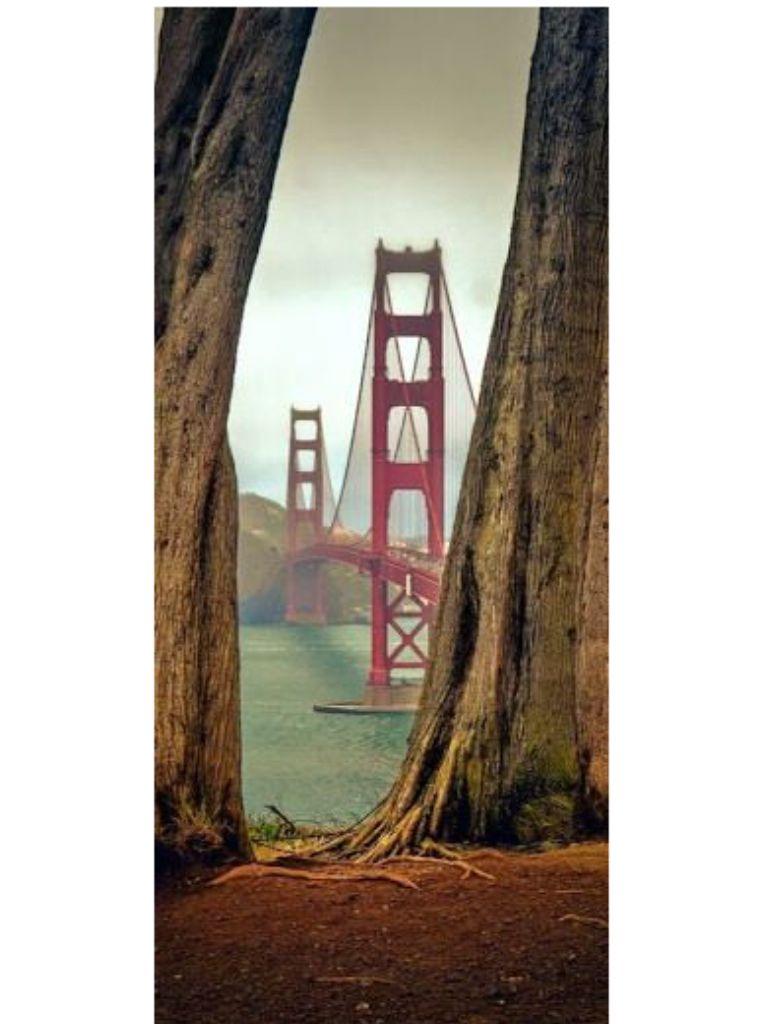 Beautiful view of Golden Gate Bridge San