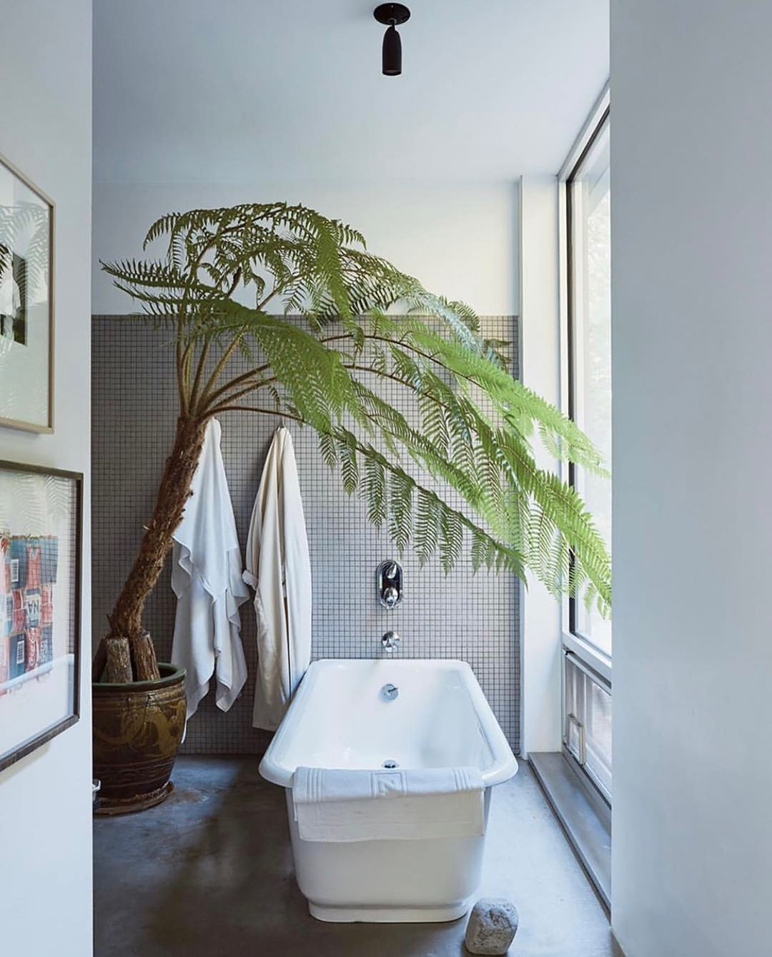 Roomoftheday In The Master Bathroom Of The Artist Jackceglic S Home In Easthampton An Australian Tre Hamptons House Australian Tree Fern Bathrooms Remodel