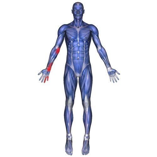 Pin On Health Pain