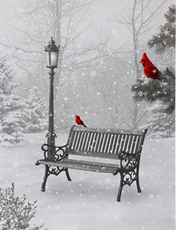 Check out the deal on Raz 24 Inch Twinkling LED Lighted Cardinal In Park Scene Print On Canvas at Battery Operated Candles