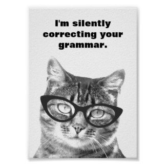 I'm silently correcting your grammar cat poster | Posters