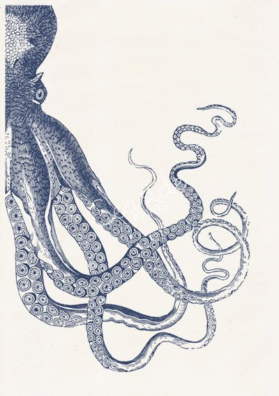 Vintage octopus n 20 - sea life print- Navy blue big octopus- vintage natural history SAS144 #history