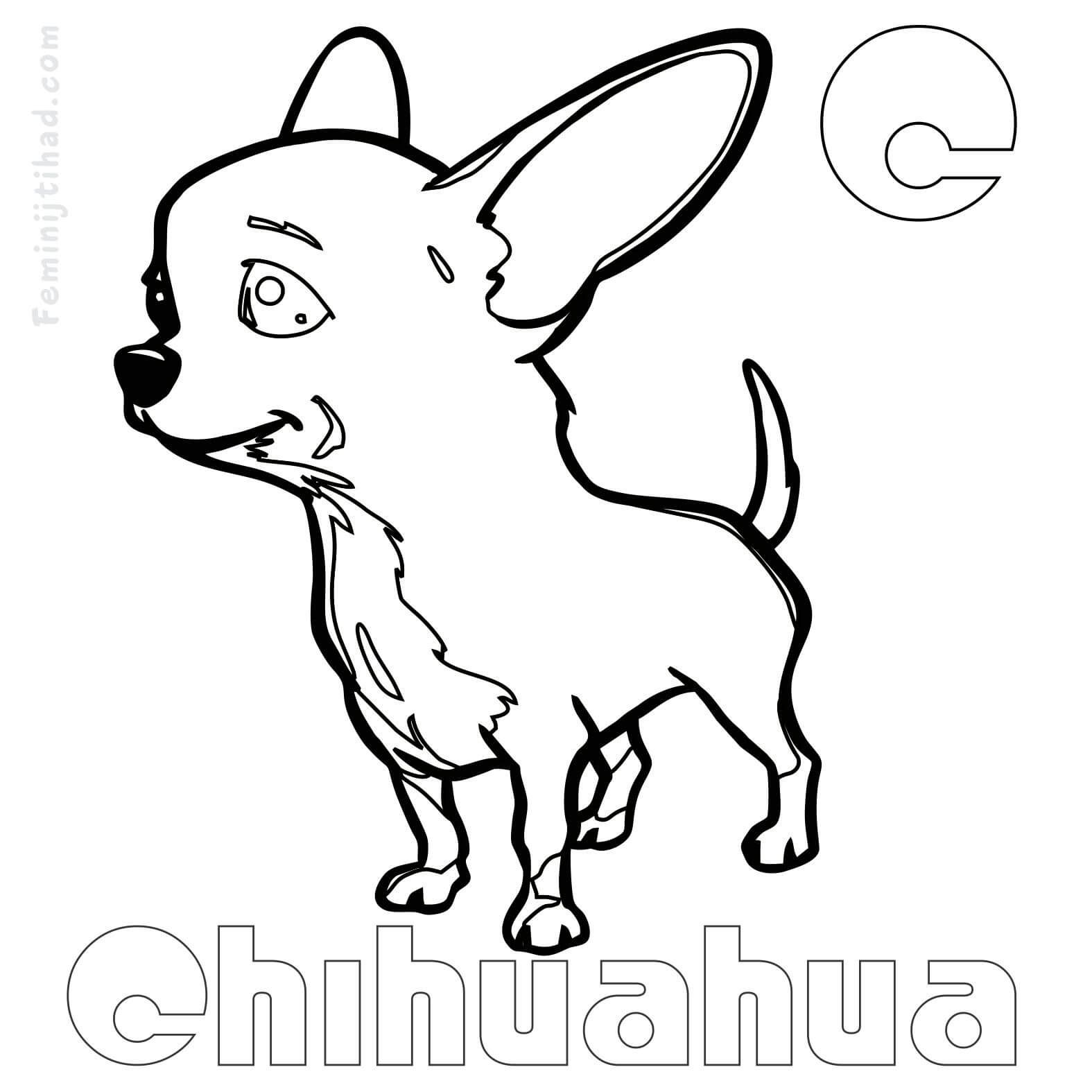 Printable Chihuahua Coloring Pages Free Coloring Sheets Dog Coloring Book Dog Coloring Page Puppy Coloring Pages [ 1575 x 1575 Pixel ]