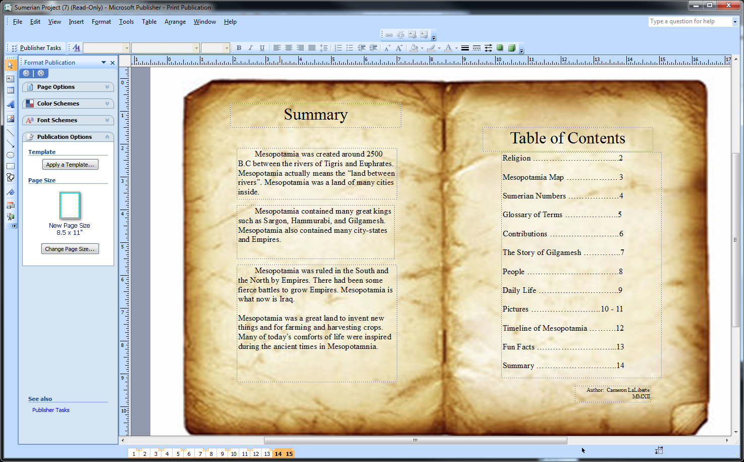 Summary Page And Table Of Contents With The Pages Being