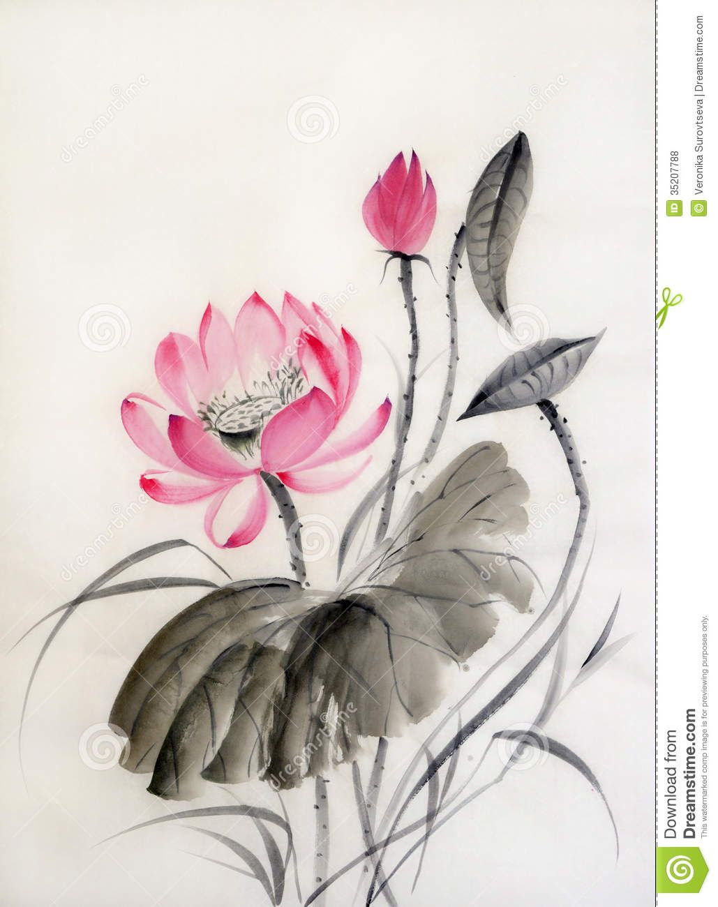 Watercolor painting watercolor flowers flower art flower - Watercolor Painting Of Lotus Flower With Big Leaf Original Art Asian Style Stock Photo From The Largest Library Of Royalty Free Images