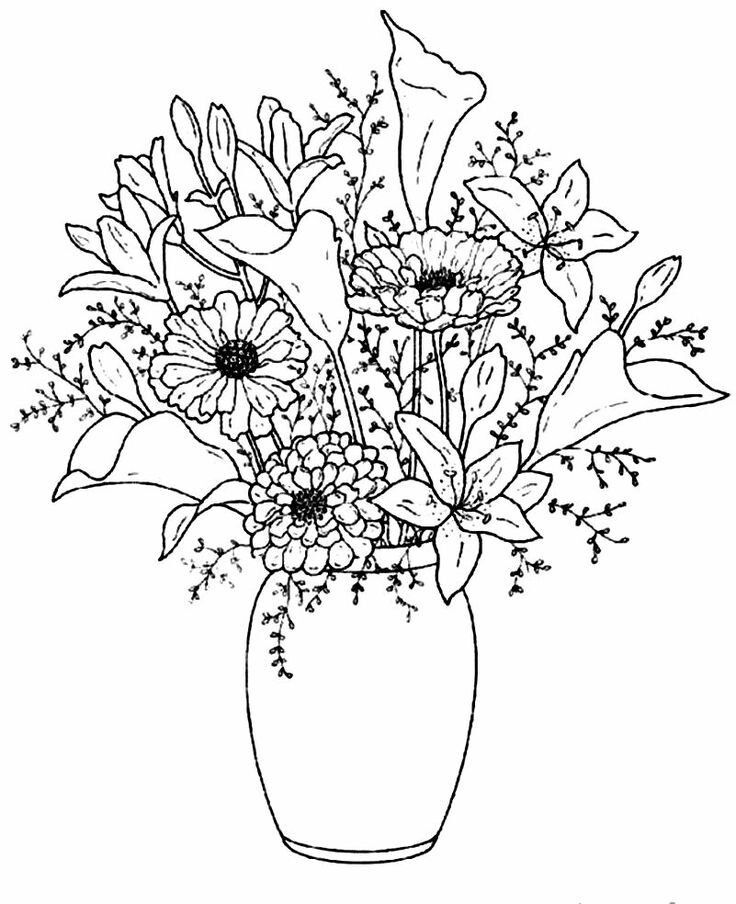 43 Best Sketches Of Flowers In A Vase Images On Pinterest Flower