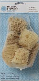 Martha Stewart Crafts ® Sea Sponge Set - 6pc