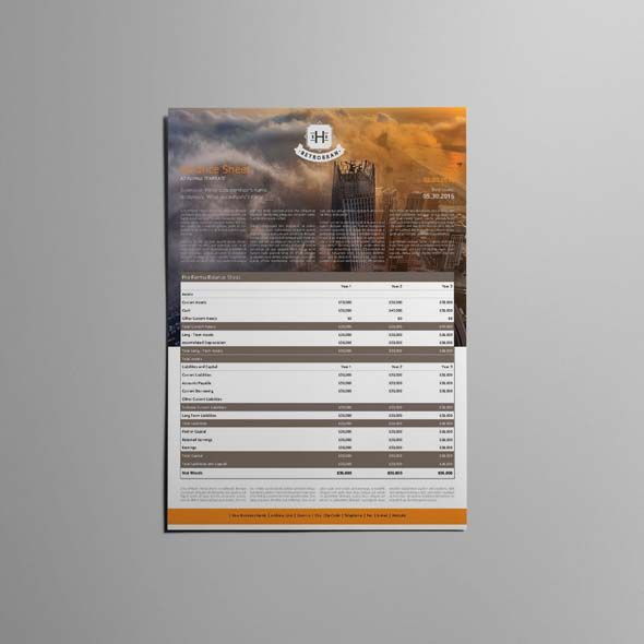 Company Balance Sheet A3 Template Templates Pinterest - company balance sheet template