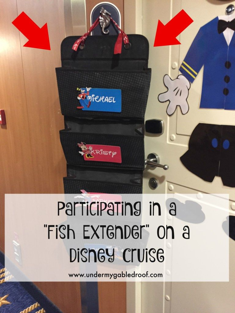 Disney Cruise Line Halloween Blanket.Disney Cruise Fish Extender Gifts And Door Magnets Disney Cruise