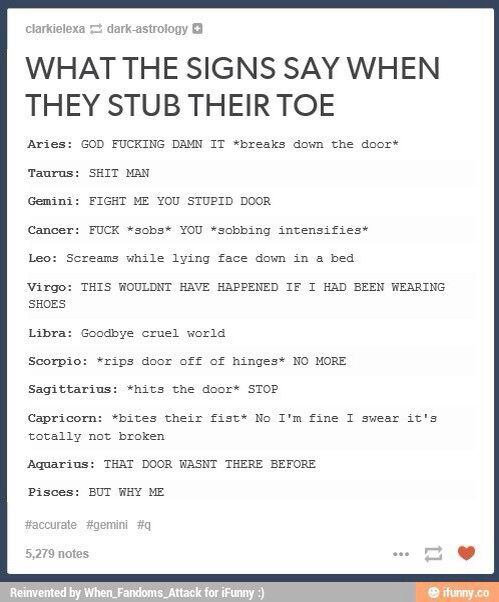 Zodiac Zodiac Signs Funny Zodiac Signs Zodiac Signs Horoscope