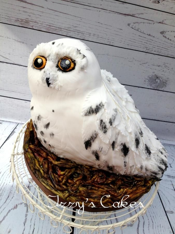 Hedwig The Snowy Owl Cakes Amp Cake Decorating Daily