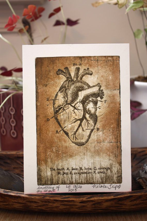 Anatomy Of The Heart Copper Plate Etching By Zootopiadesign On Etsy Art Prints Etching Prints Art