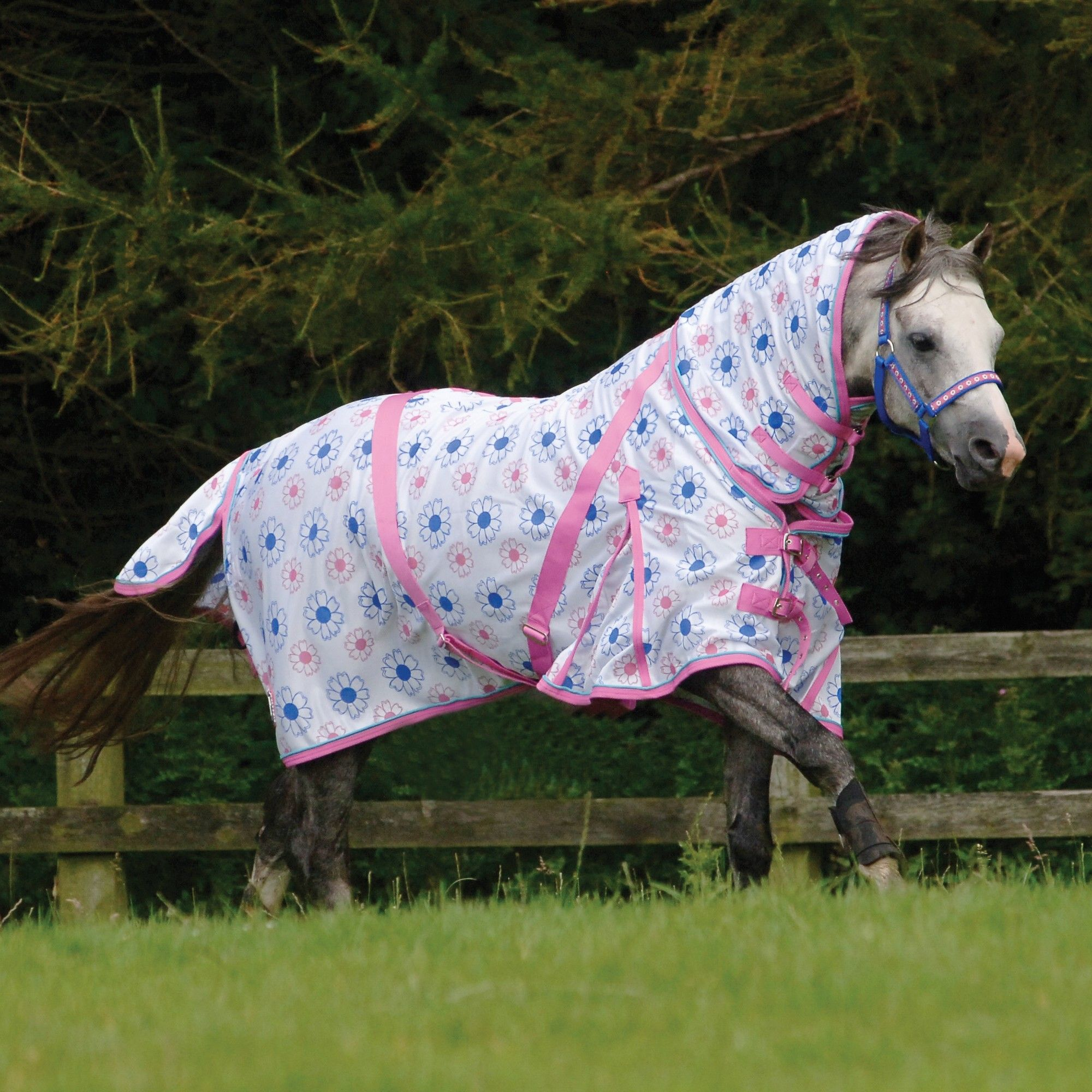 Cottage Craft Pony Fly Mesh Rug This Colourful Sheet Has Built In Design