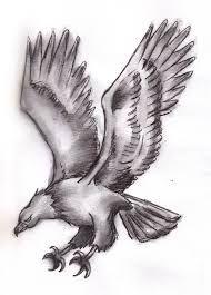 image result for flying eagles sketch eagles pinterest eagles