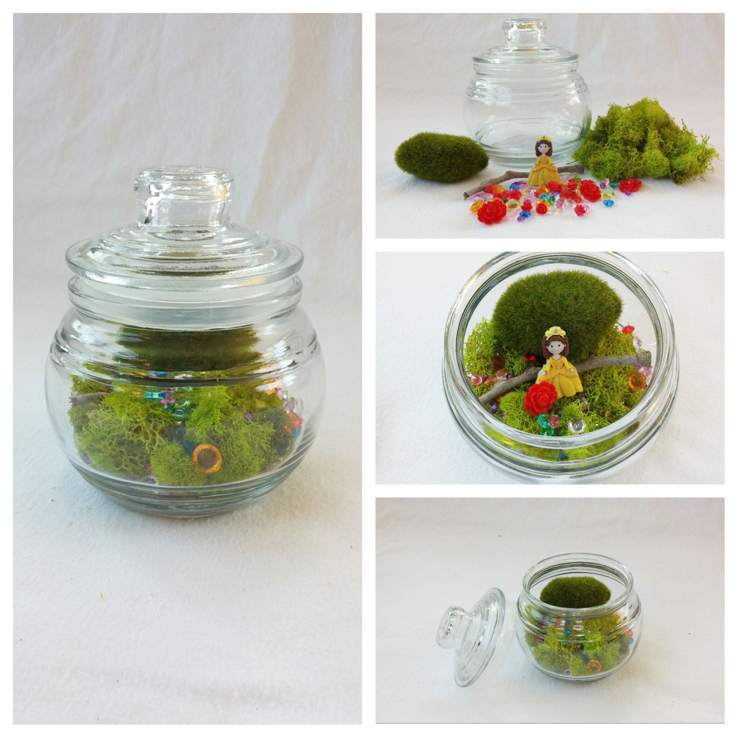 Yellow Princess Terrarium With A Twist Beauty Beast Red Rose