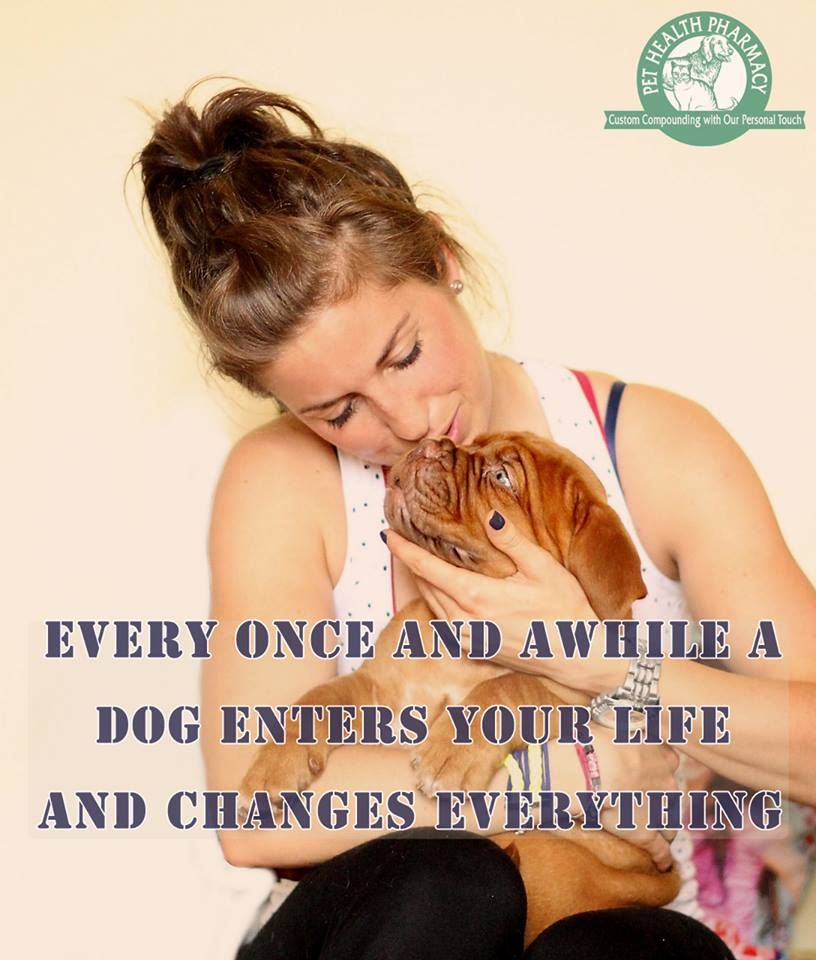 Every once and awhile a dog enters your life and changes everything. goo.gl/vwl5Fn