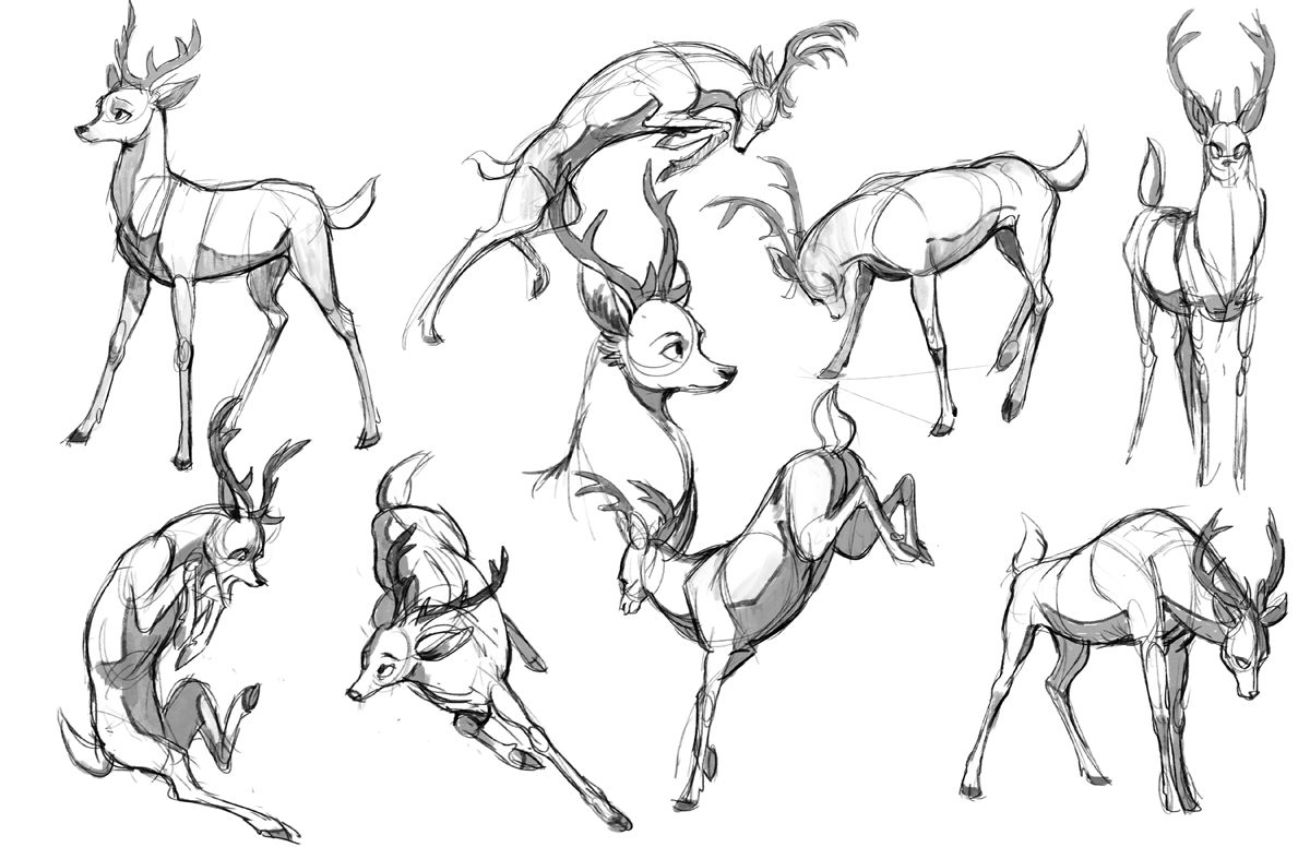 some stylized deer poses exploration | Drawing animals | Pinterest ...