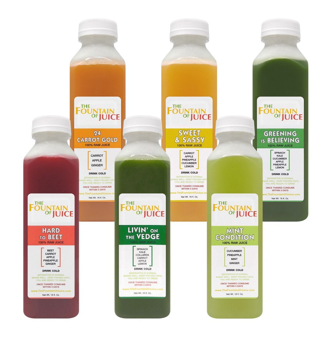 The fountain of juice 100 raw juice classic cleanse cold pressed the fountain of juice 100 raw juice classic cleanse cold pressed no malvernweather Image collections