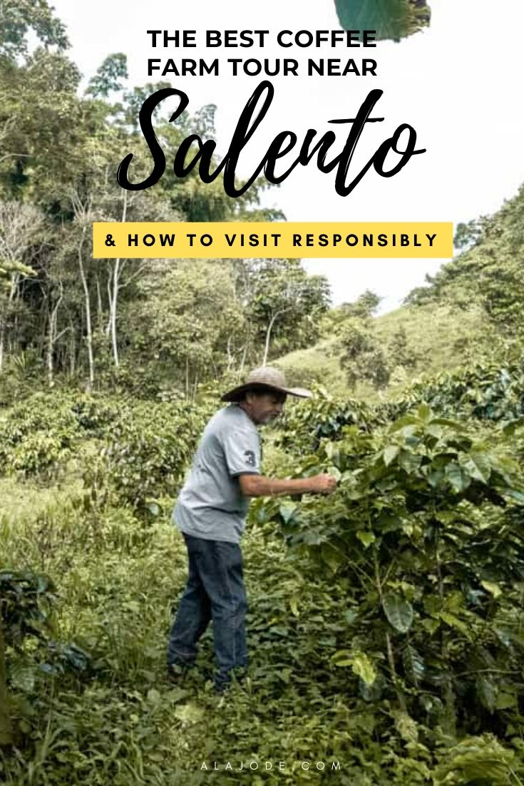 Visiting A Coffee Farm In Colombia (& The Best Coffee Tour ...