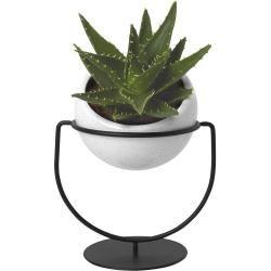 Photo of Ceramic planters