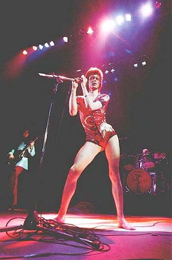 The Ziggy Stardust Companion - Ziggy Stardust Gallery 27