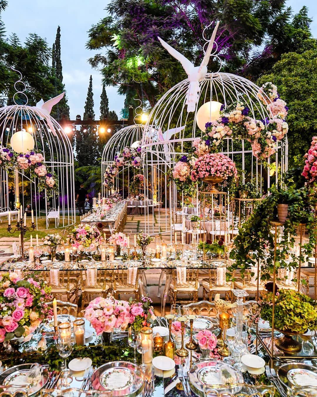 Image May Contain Plant Tree Flower And Outdoor Paradise Wedding
