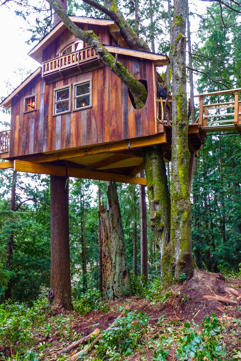 2015_Edmonds_Pirate_Ship-62.jpg | Living on Tree Tops By Stefan King ...
