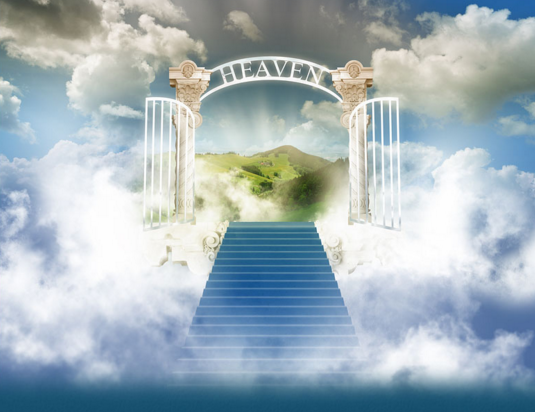20+ Open heavens daily devotional ideas | daily devotional, how to memorize things, heaven