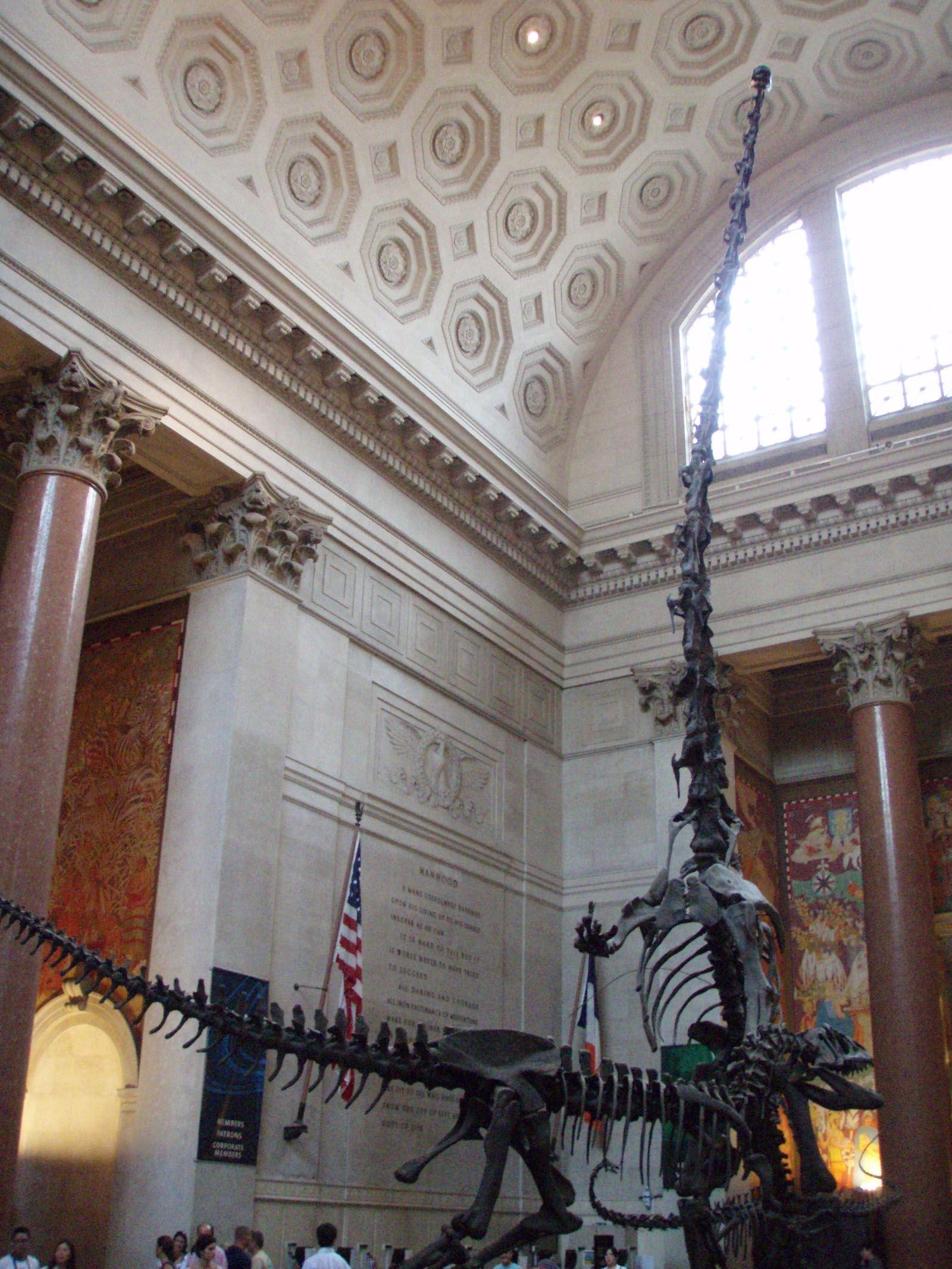 Visitar Casi Gratis Los Museos De Nueva York Viajar A Estados Unidos Museo De Nueva York Viajar A Estados Unidos Viaje A Nueva York