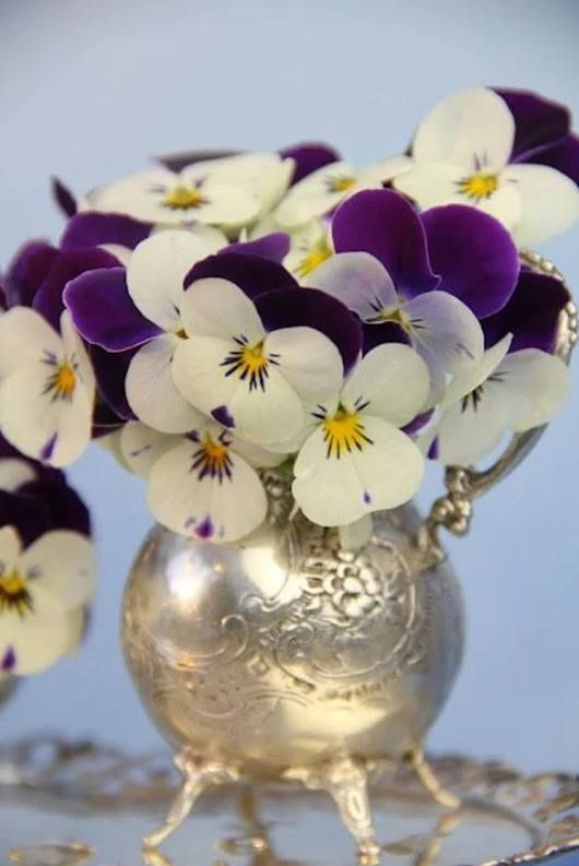 Pin By Mr Geller On Daffodils And Pansies Flower Arrangements Pansies Pretty Flowers