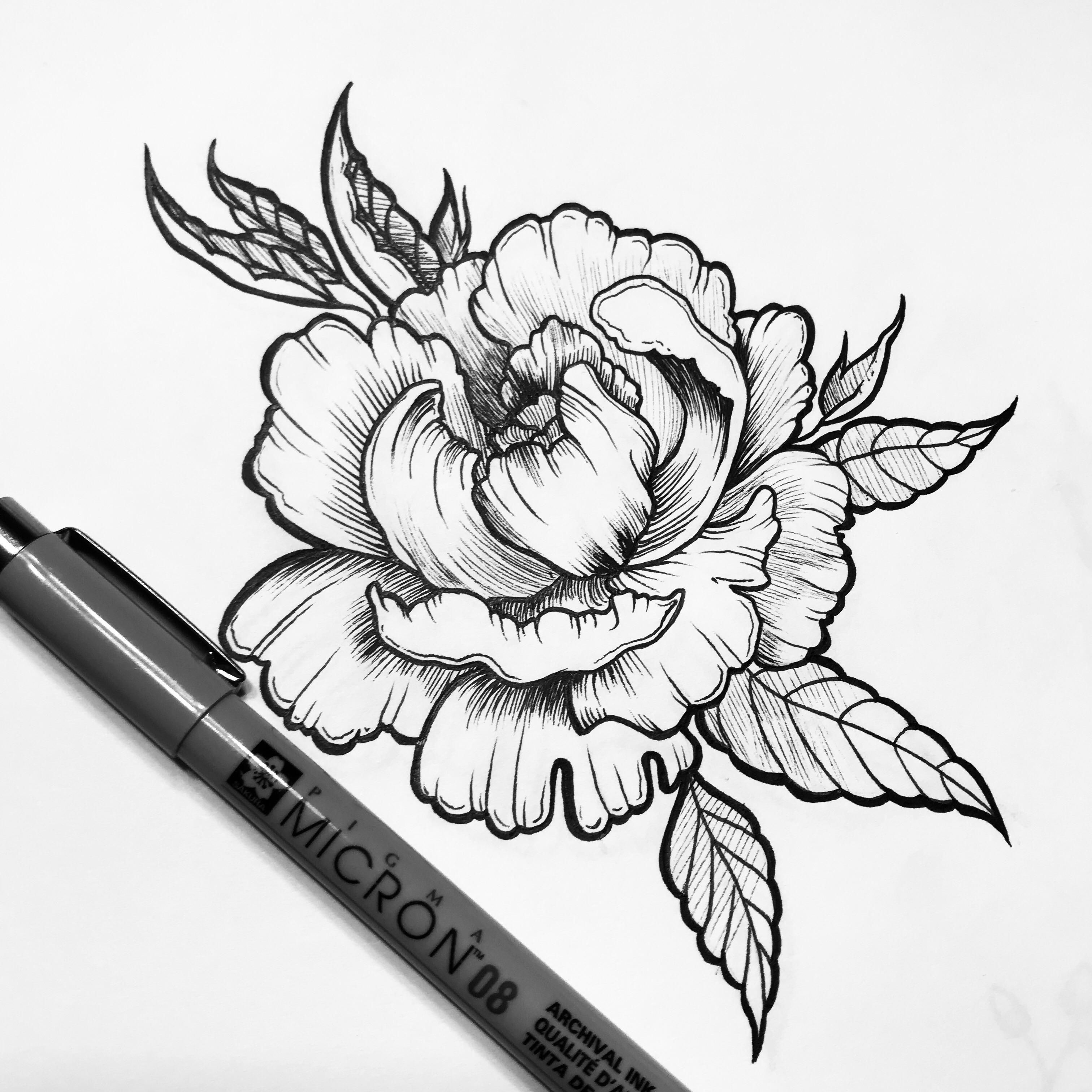 Photo Realistic Flower Tattoos Google Search: Peony Drawing - Google Search