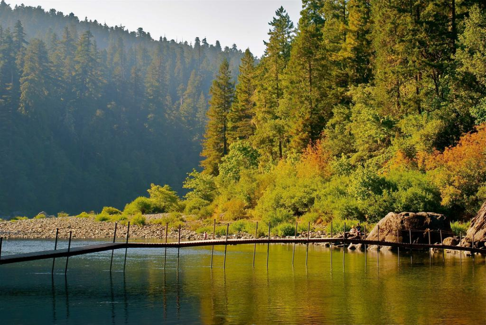 Redwood Meadows Rv Resort Crescent City Ca Booking Com In 2020 State Parks Crescent City Cool Places In California