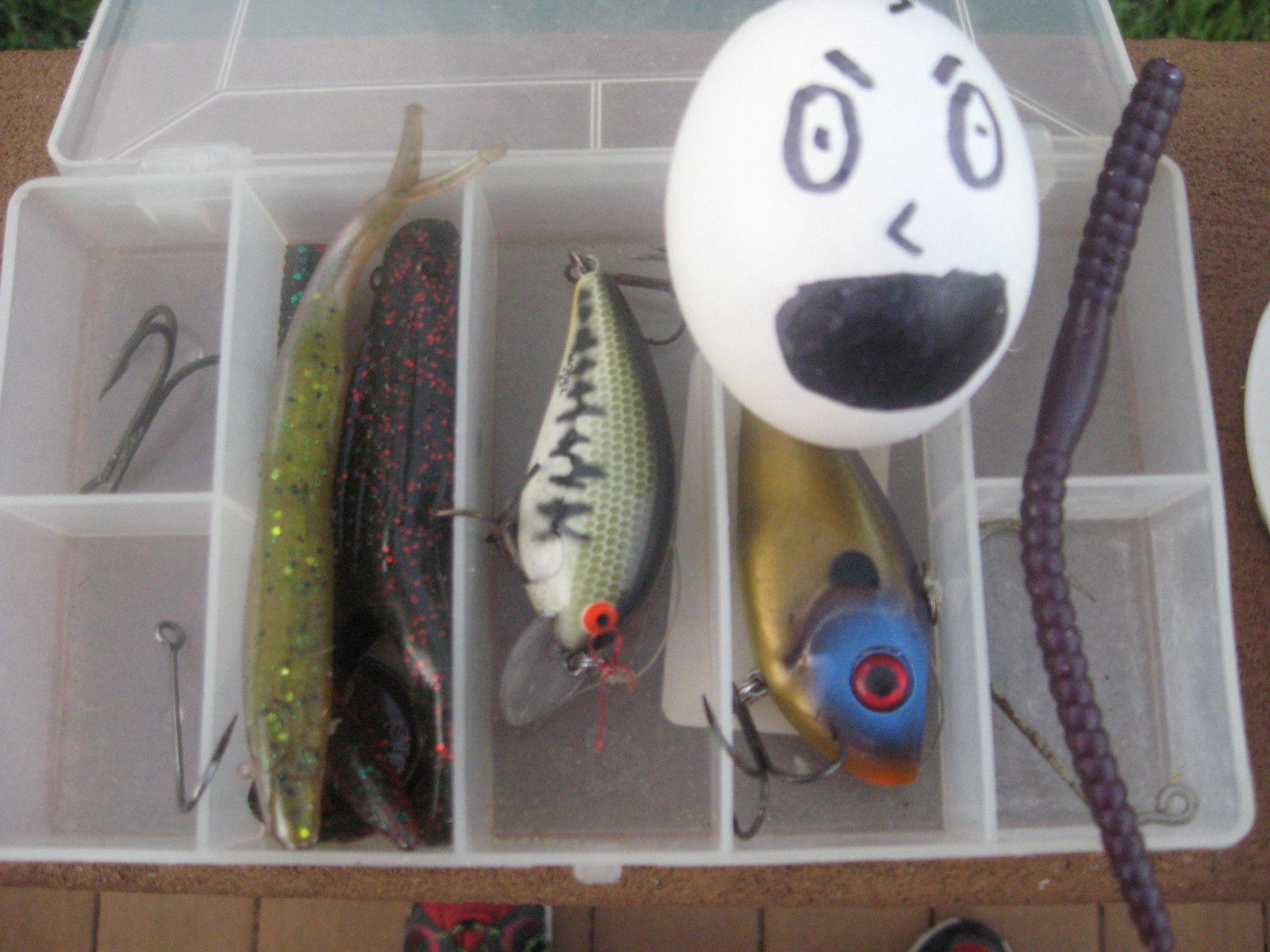 Fishing With Kora Fish Eggs Food