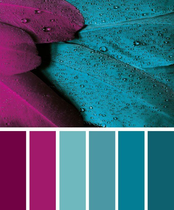 Magenta And Teal Color Inspiration Color Colorpalette Teal Color Palette Apartment Color Schemes Color Schemes Colour Palettes