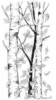 northwoods rubber stamp birch tree wfalling leaves - Birch Tree Branches Coloring Pages