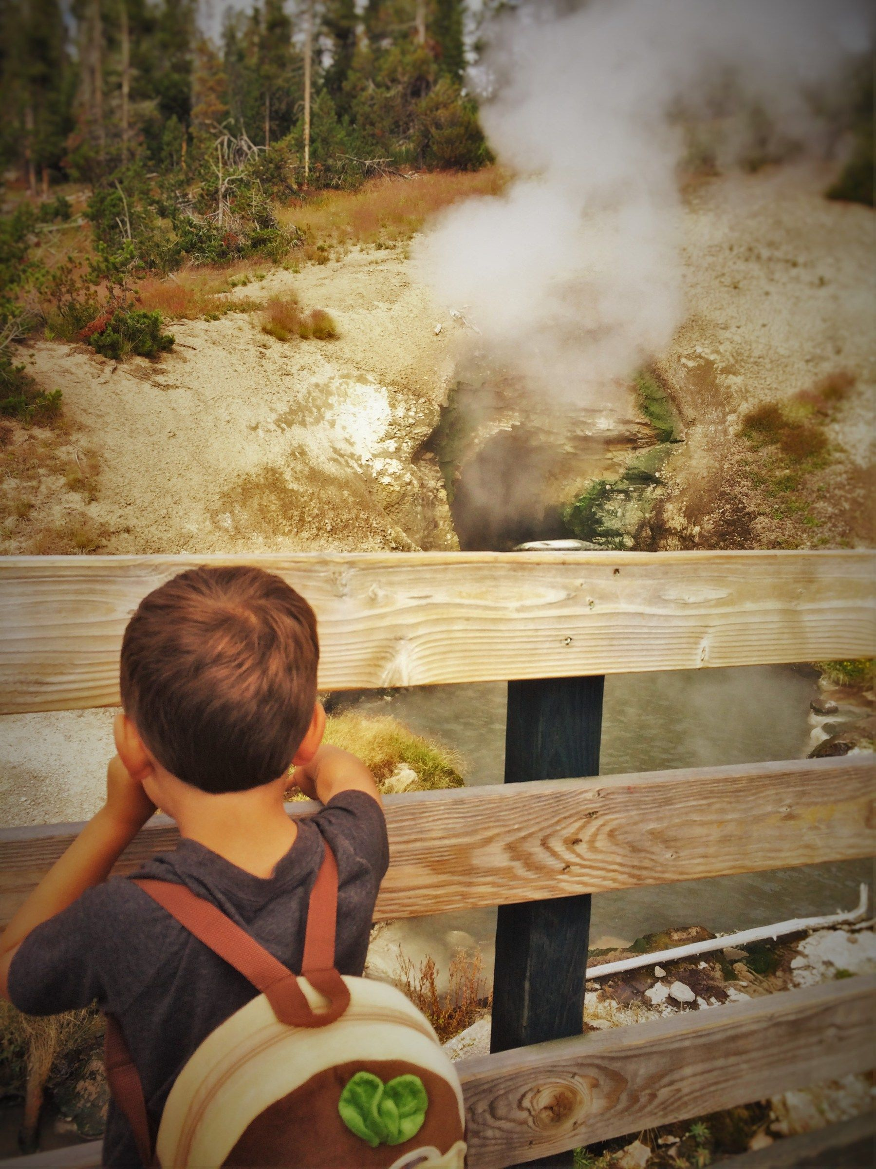 LittleMan at Dragons Cauldron Mud Volcano Yellowstone 2