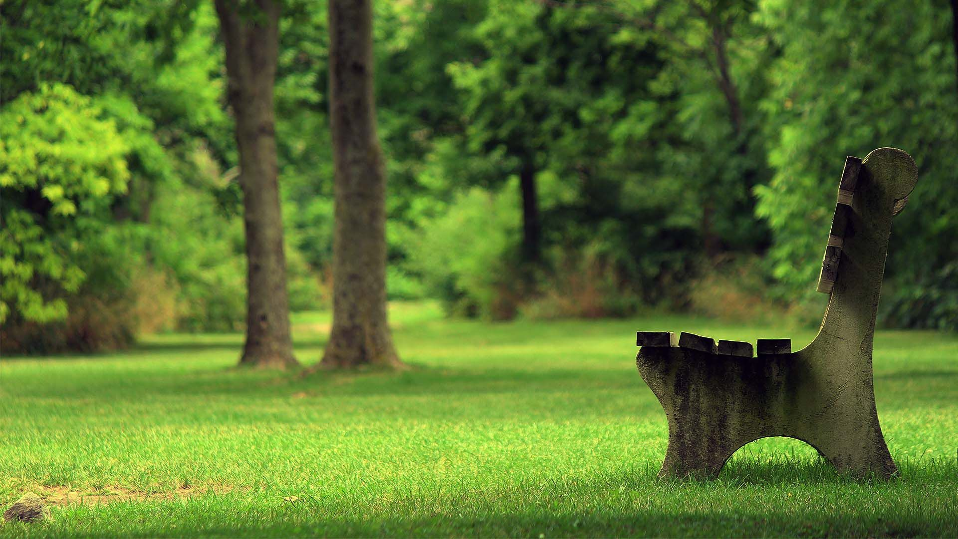 Photography Bench Green Park Wallpaper 1920x1080 Cool Pc Wallpapers Outdoor Summer Relaxation Relaxing Images