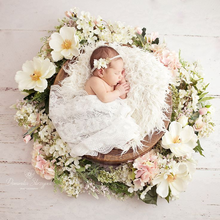 Newborn girl , flowers, spring set up , newborn photography Visit my page for mo... - Newborn photo collection - -