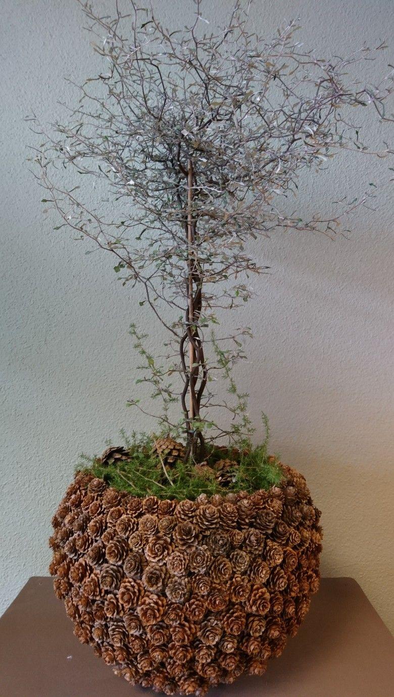 Pin von ivana kru ov auf dekorace pinterest for Deko topfpflanzen