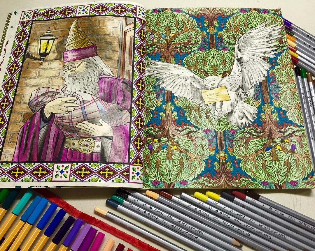 Harry Potter Coloring Book Colouring Books Vintage Pages