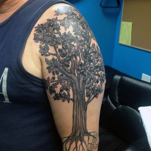 Tree Tattoos Shoulder Men Oak Tree Tattoos Designs Ideas And Meaning