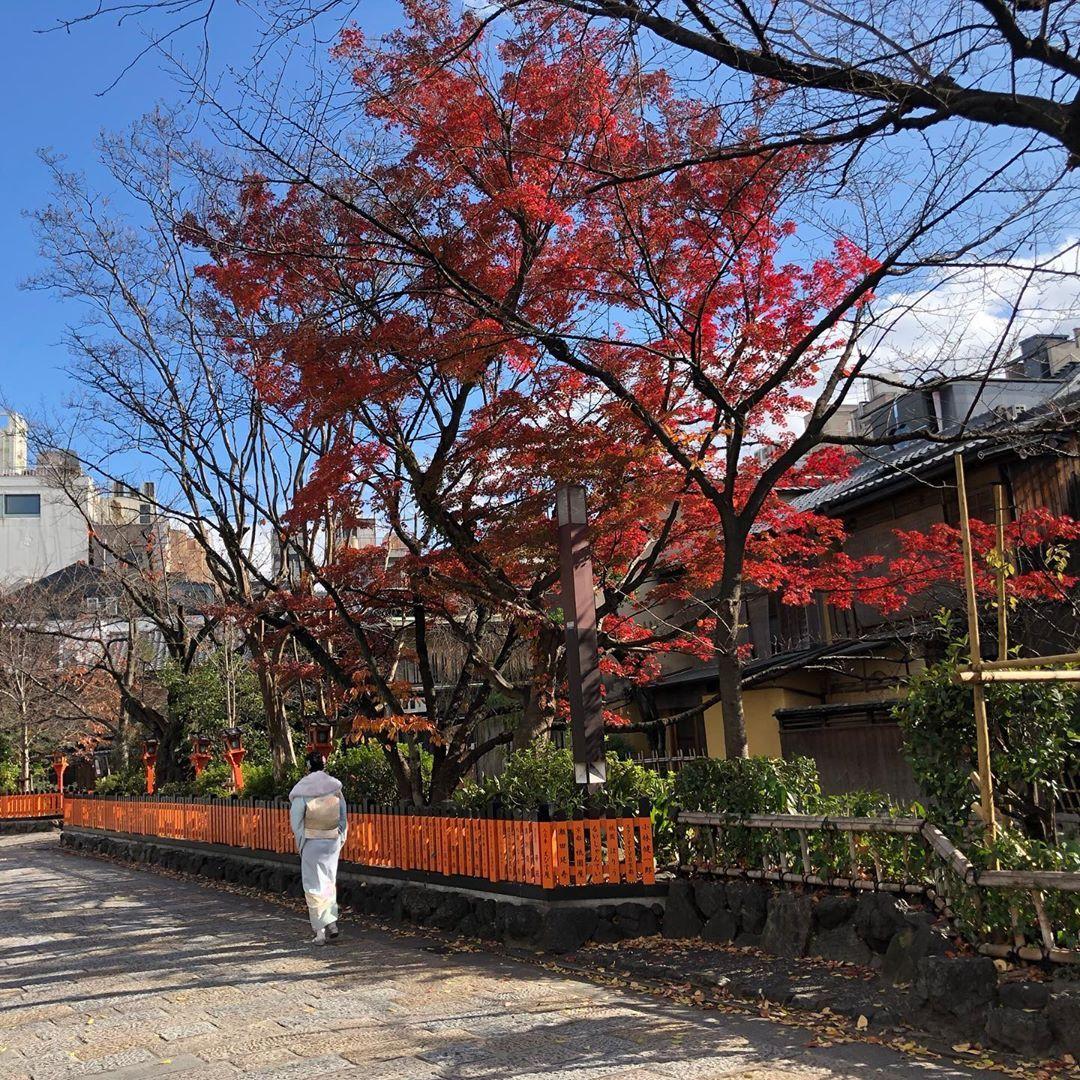 Kyoto .... #travel #travelphotography #photography #nature #travelgram #love #photooftheday #instatravel #instagood #wanderlust #trip #travelblogger #adventure #traveling #vacation #picoftheday #travelling #explore #instagram #landscape #beautiful #ig #holiday #like #beach #summer #naturephotography #art #photo #bhfyp